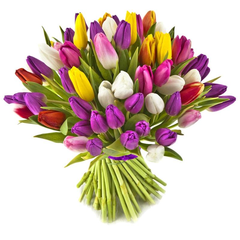 Kwiaty I Prezenty Na Dzien Kobiet Jakie Kwiaty Na Dzien Kobiet E Kwiaty